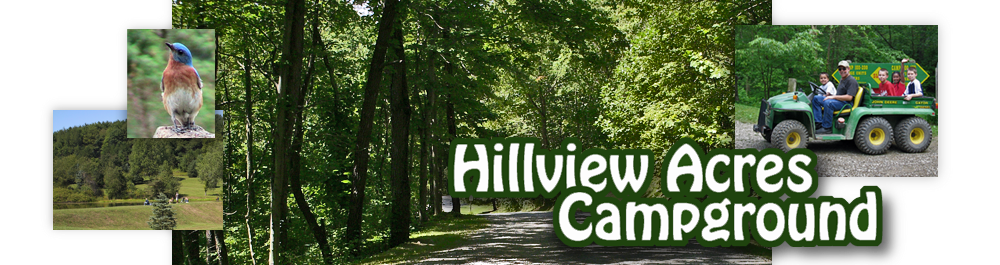 Hillview Acres Campground Welcomes You